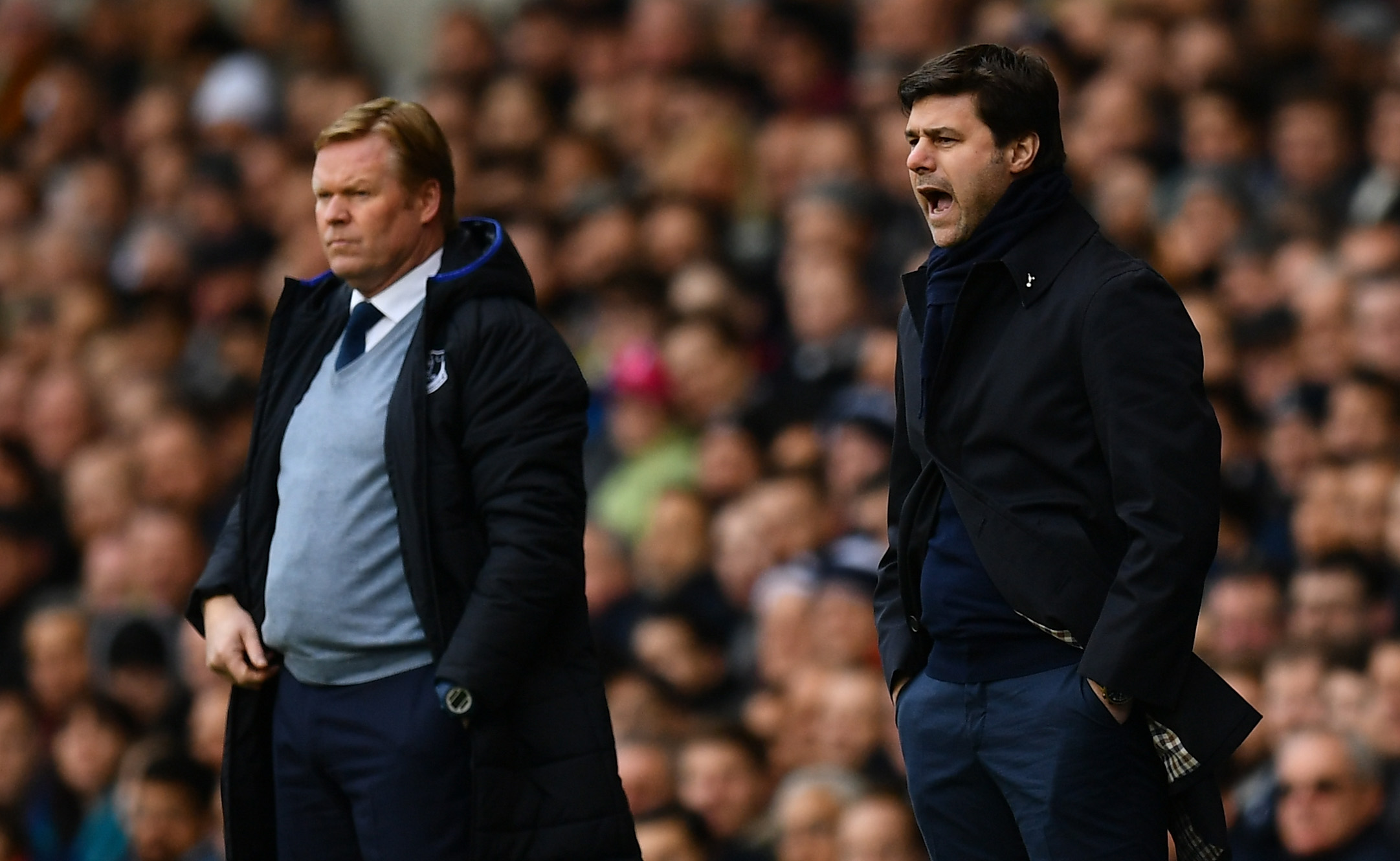 New Tottenham man doubtful for Everton trip, four Spurs men definitely out